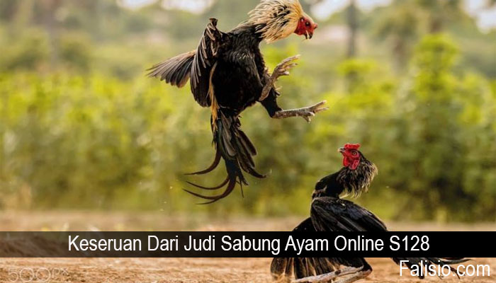 Keseruan Dari Judi Sabung Ayam Online S128