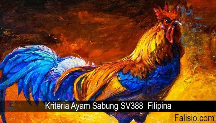 Kriteria Ayam Sabung SV388 Filipina